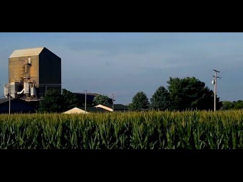 Illinois (Audio Video)