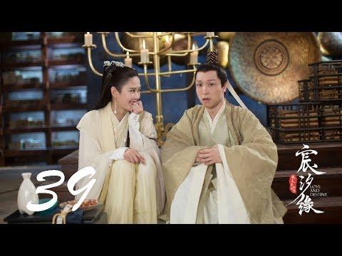 宸汐緣 Love And Destiny 39 張震 倪妮 CROTON MEGAHIT Official