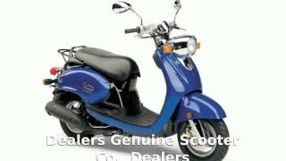 1. 2010 Genuine Scooter Co. Buddy International Little Saint Tropez 50 Features & Details