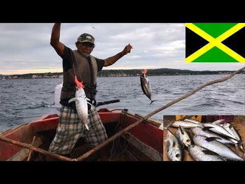 Jamaica Negril, Tuna Fishing With Local Fisherman - Things To Do