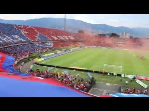Video - El mejor tifo en la historia del futbol colombiano DIM - Rexixtenxia Norte - Independiente Medellín - Colombia - América del Sur