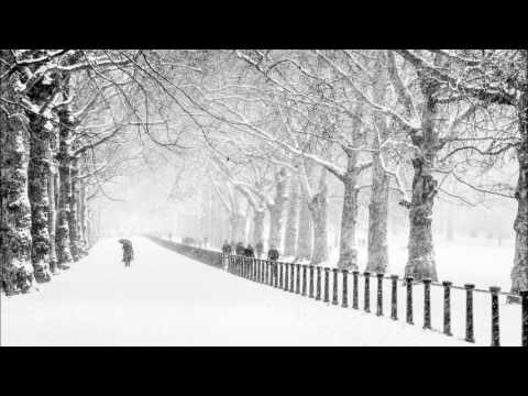 Desktop Wallpapers Black And White Christmas Park Wallpaper