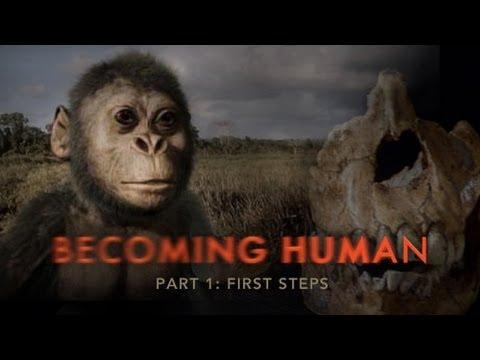انسان شدن، قسمت اول  - تکامل