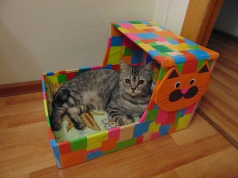 Все для кошек из коробки