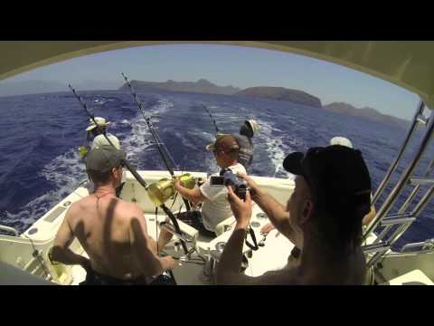 Blue marlin-action, Kapp Verde, april-mai 2014 (видео)