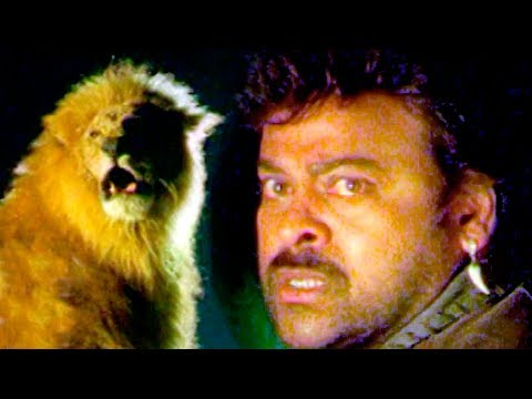 Chiranjeevi Most Popular Power Pack Action Scenes || التيلجو أفضل مشاهد العمل