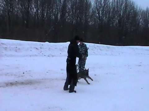 тренинг с Павлом Зоркиным