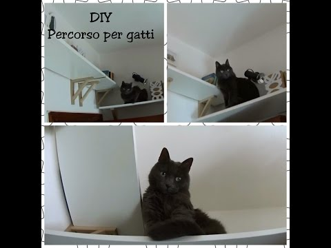 DIY Cat house (mini): percorso per gatti con un vecchio mobile.
