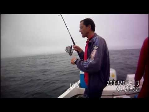 Pesca 13 Julho 2013 Póvoa Varzim
