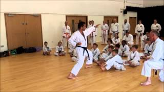 Scott Langley Sensei - HDKI