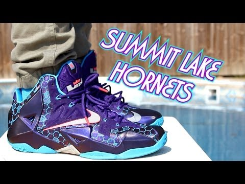 Summit Lake Hornets LeBron 11 On Feet