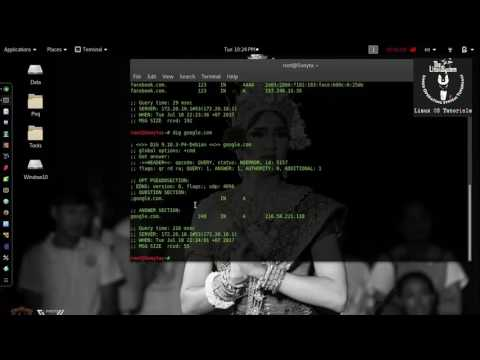 Dig - Web Information Gathering on Kali Linux [HD] ✔