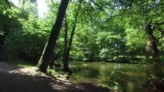 Molln Germany  city pictures gallery : Drone footage Schmalsee Mölln Germany June 2016