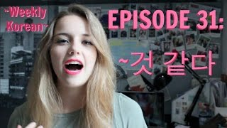 Episode 31: Everything You Need to Know About ~것 같다!