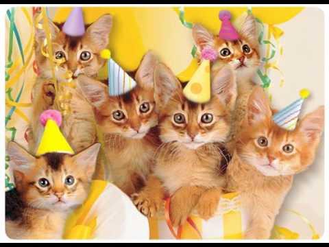 Imagens de feliz aniversário - Feliz Aniversário, Meow!