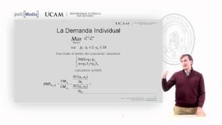 Microeconomía I - La Teoría De La Demanda (2) - Alfonso Rosa García