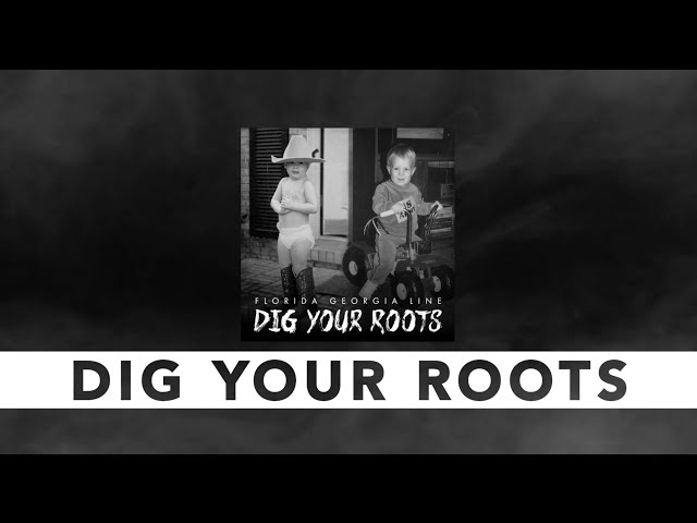 Florida Georgia Line Dig Your Roots Tour Review
