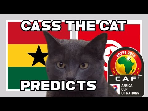 2019 AFRICA CUP OF NATIONS -LAST 16 - GHANA VS TUNISIA – CASS THE CAT PREDICTS