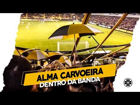 OS TIGRES | ALMA CARVOEIRA - Criciúma 3 x 2 Fluminense - Brasileirão 2014 - Os Tigres - Criciúma