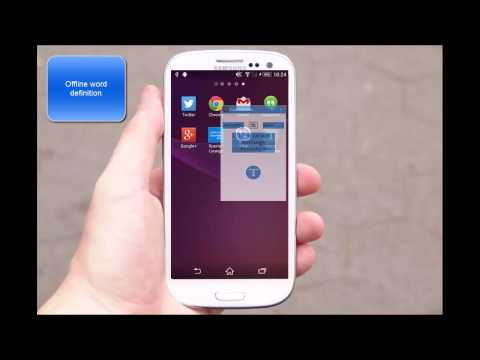 Video of Inapp Translator