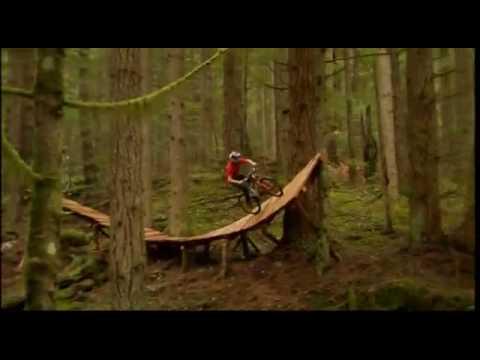 extreme downhill nel bosco