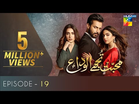Mohabbat Tujhe Alvida Episode 19   Digitally Powered By Master Paints   HUM TV Drama 21 October 2020