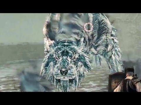 pet - Overcome the immense Siberian tiger boss in the new Dark Souls 2 DLC.