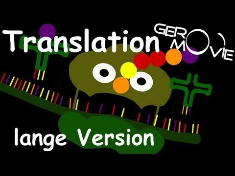 translation - Die Translation ist ein Lehrvideo für Biologie (Zelle) [GeroMovie©] Mit witzigen und anschaulichen Erklärungen versteht jeder was eine Translation ist und wa...
