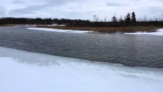 Wixom (MI) United States  city photos : 2015 Winter Hike Flashback (Wixom, MI)