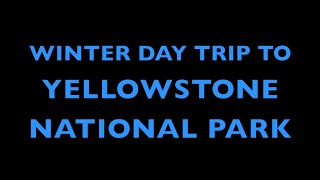 Gardiner (MT) United States  City new picture : Winter Day Trip in Yellowstone National Park