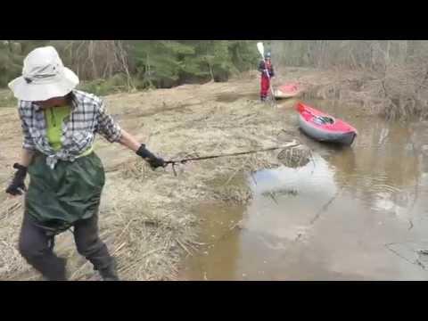 рыбалка на меже