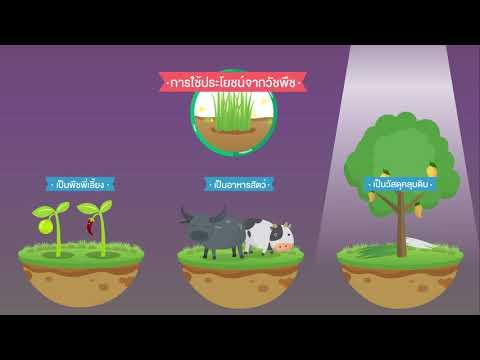 เกษตรธรรมชาติ (Natural Farming)