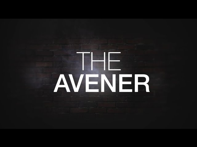 Contact Session avec The Avener