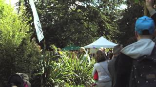 The Seething Freshwater Sardine Festival 2015