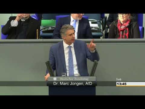 Marc Jongen(AfD) fertigt die Grünen ab!