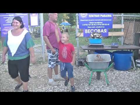 Видео отчет о рыбалке за 25 августа 2018