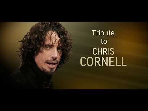 Mike Hayes - Fell On Black Days (Chris Cornell Tribute)