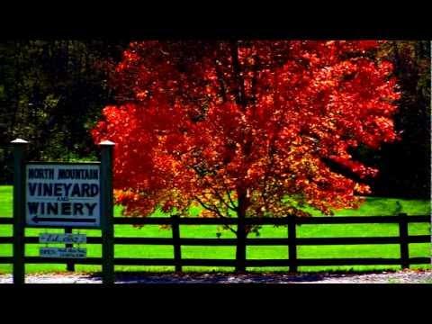 Visit the Shenandoah County, Virginia Wine Trail!