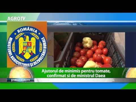 AJUTORUL DE MINIMIS PENTRU TOMATE, CONFIRMAT SI DE MINISTRUL DAEA