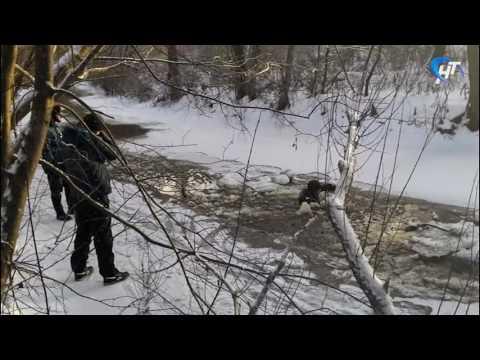 Следственный комитет проводит проверку по факту трагедии в Старорусском районе