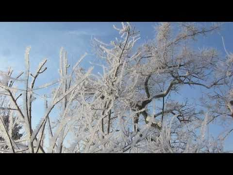 Shivering Hoarfrost