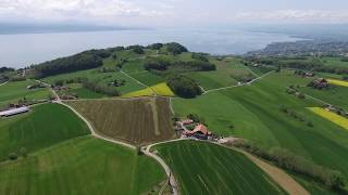Grandvaux Switzerland  city photos : DJI Phantom 3 - Grandvaux / Vaud / Suisse