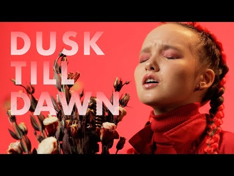 ZAYN - Dusk Till Dawn ft. Sia ( cover by Arina ) (видео)