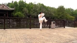 冷曉峰24式太極拳2012-12-12荔枝角公園嶺南之風)