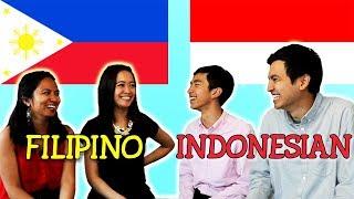 Video Language Challenge: Filipino vs Indonesian MP3, 3GP, MP4, WEBM, AVI, FLV September 2018