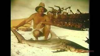 Conrad Limbaugh and the Sharks of Clipperton Island.