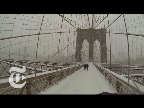 Umbrella Cam s View of Wintry New York