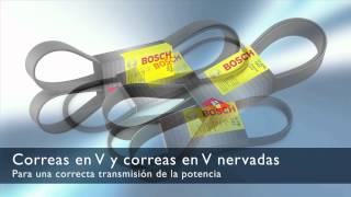 Correas y kits de transmisión Bosch