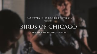 Superlover | Birds of Chicago