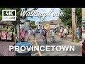 Cape Cod Waing Tour - Provincetown